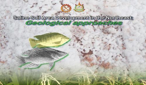 Saline Soil Area Development in the Northeast:Geological approaches